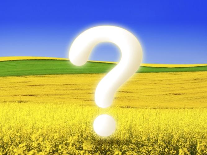 http://d34kr5jvxlwc7m.cloudfront.net/agronotizie/materiali/ArticoliImg/obiettivo-agricoltura-punto-di-domanda.jpg