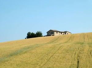 Azienda-agricola-1