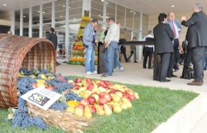 macfrut-ortofrutta-fiera